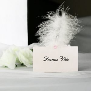 PLACAR118 Silver Place Card with Feather
