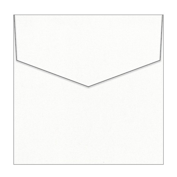 Milk Bath Metallic Invitation Envelopes