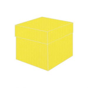 yellow crocum vise versa top box bonbonniere box
